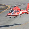 Photos: 名古屋市消防航空隊 エアバスヘリコプターズ AS365N3 Dauphin2 JA08AR ひでよし IMG_6909-2