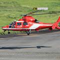 Photos: 名古屋市消防航空隊 エアバスヘリコプターズ AS365N3 Dauphin2 JA08AR ひでよし IMG_6911-2