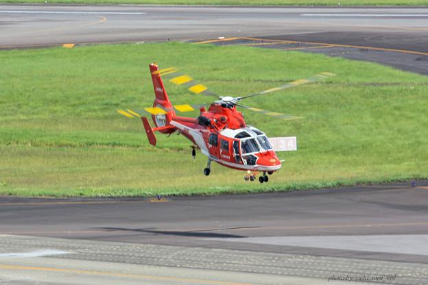 名古屋市消防航空隊 エアバスヘリコプターズ AS365N3 Dauphin2 JA08AR ひでよし IMG_7215-2