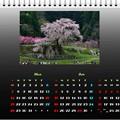 2021年3月カレンダー枝垂れ桜