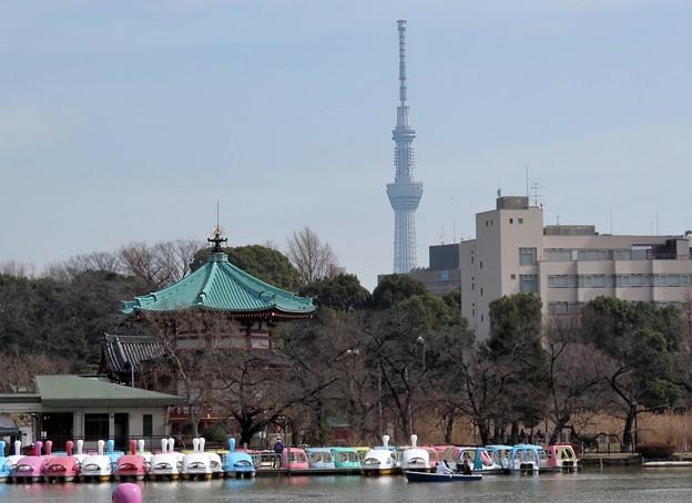 鐘は上野か浅草か