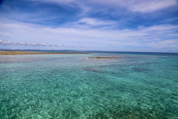 Photos: 海鳥保護区
