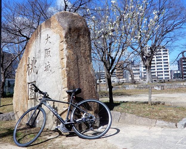 Photos: 大阪城桃園とマイCB