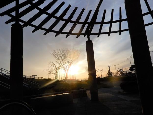 花園中央公園夕照