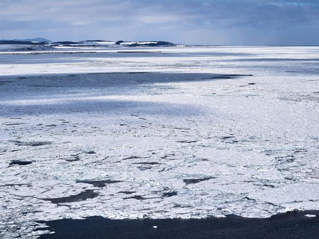 能取岬の台地の上から見た流氷
