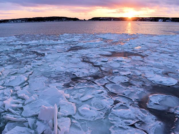 夕日と流氷(オーロラ号から)