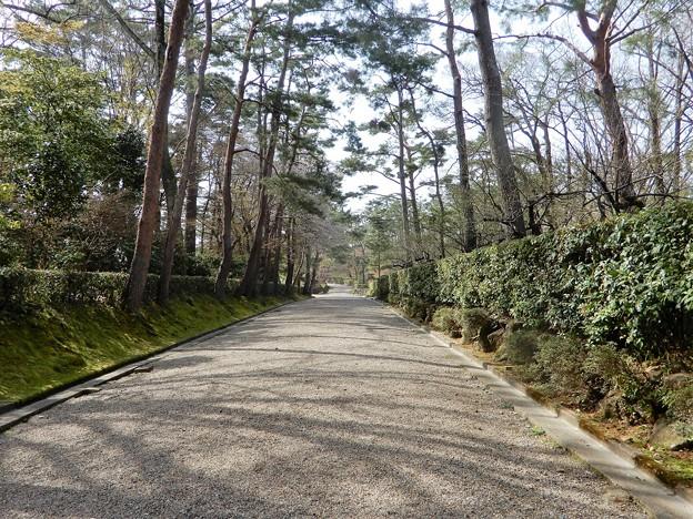 亀山城址 (1)