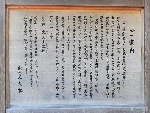 亀山城址 (2)