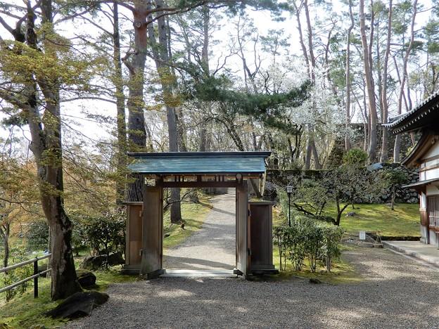 亀山城址 (6)