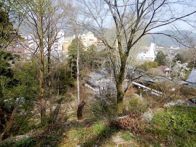 亀山城址 (8)