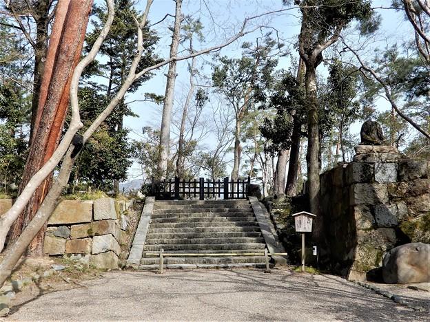亀山城址 (11)