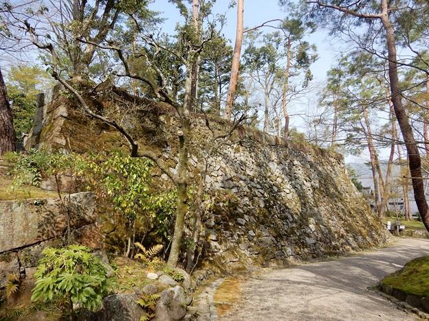 亀山城址 (12)