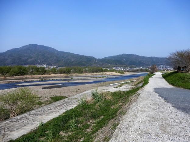 保津川(桂川) (3)