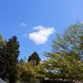 Photos: 2021年4月9日の空