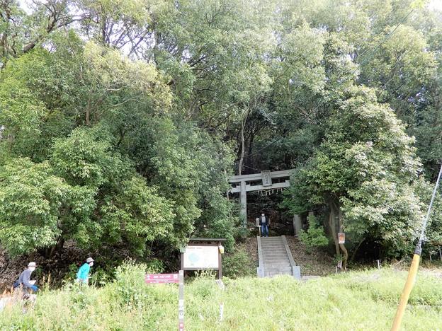 03耳成山・山口神社 (3)