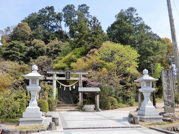 17飛鳥坐神社 (1)