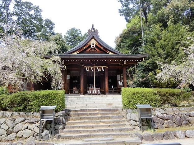 17飛鳥坐神社 (2)