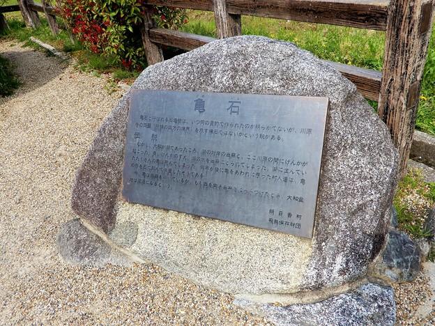 21亀石 (2)