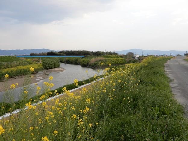 27飛鳥川と大和川の合流点