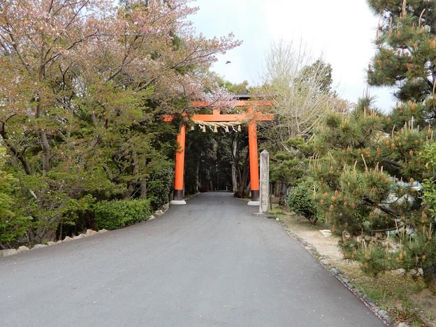 28広瀬神社