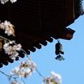 興福寺・南円堂 (2)