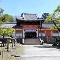 手向山八幡宮 (1)