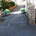 Photos: 率川 (1)