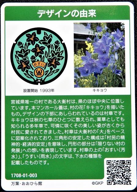 05宮城県黒川郡大衡村のマンホールカード (2)