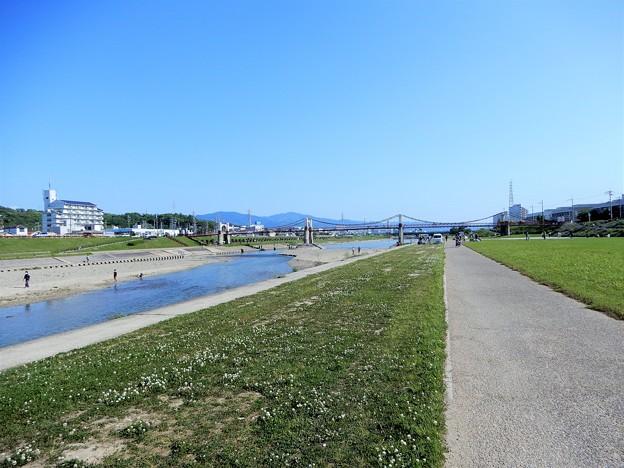 石川自転車道・玉手橋