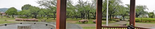 花園中央公園で雨宿り (1)