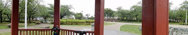 花園中央公園で雨宿り (2)