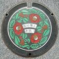 899-4300霧島市のマンホール(クロガネモチとヤマツバキの図柄)
