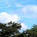 Photos: 今日の空(2021.09.09 (3)