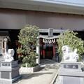 Photos: 萱島神社 (4)
