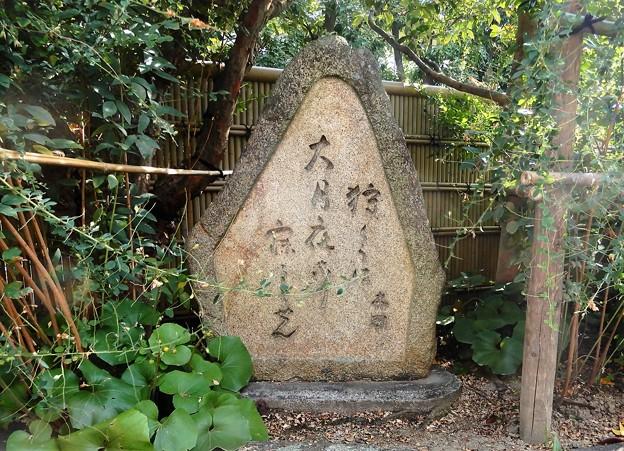 田村木国句碑 (1)