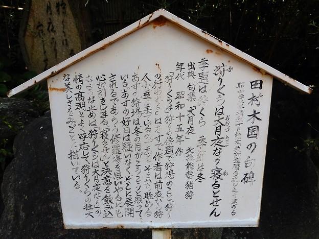 田村木国句碑 (2)