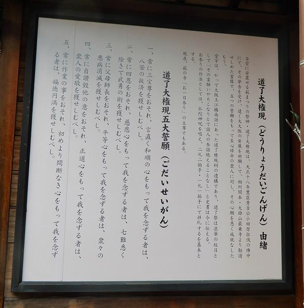 道了大権現石仏像 (2)