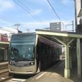 Photos: 松虫