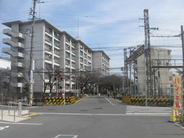 帝塚山5号