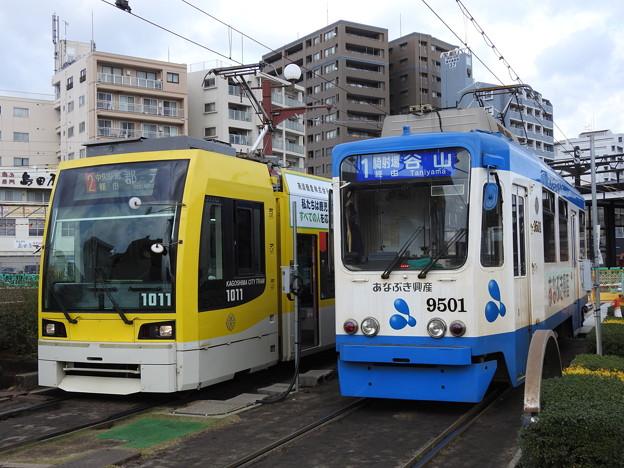 【鹿児島市電】1000形 1011号車&9500形 9501号車