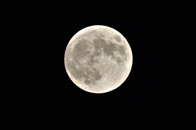 6月24日満月かな・・