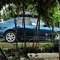 ジャングルの中から愛車