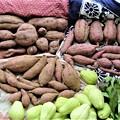 サツマイモ収穫(頂きもの含む)