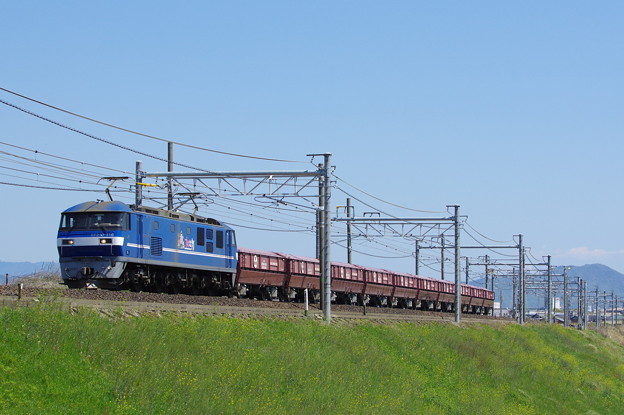 IMGP1290