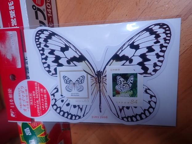 オオゴマダラフレーム切手