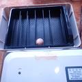 Photos: 3月2日1卵セット