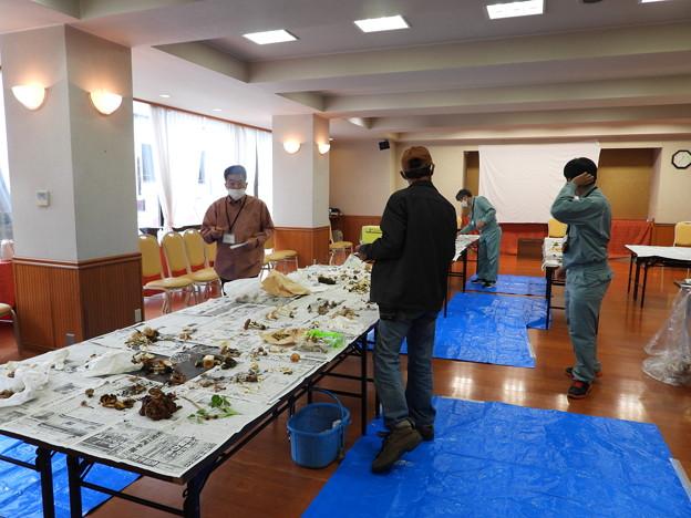 ホクトのキノコ会(野沢温泉) (2)