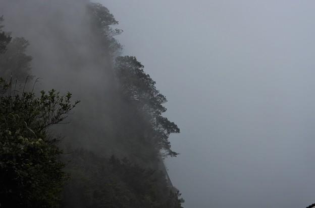 立ち昇る霧