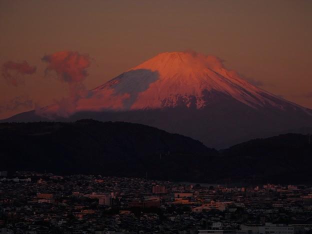 2021/10/23・・・紅富士を狙うNo03