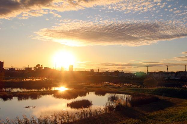 春の夕暮れ(大柏川遊水池)02
